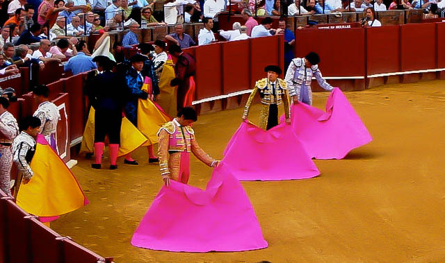 blog bullfight.jpg