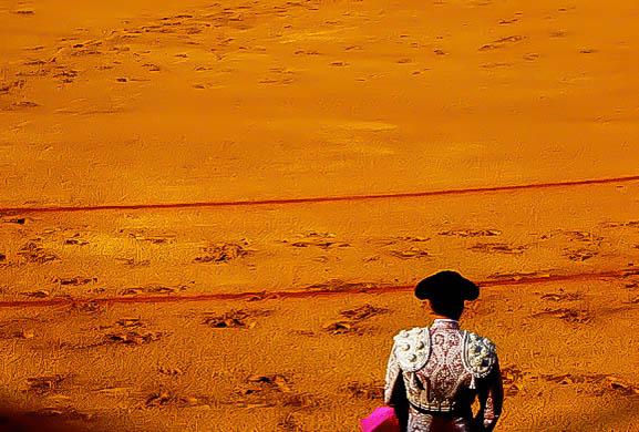 blog bullfight2.jpg